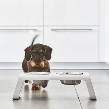 Dog feeder MiaCara Desco bois blanc